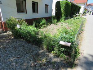 85 Gemüsegarten vor dem Haus Anwesen Stephansposching (Andere)